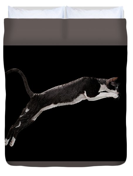 Jumping Cornish Rex Cat Isolated On Black Duvet Cover