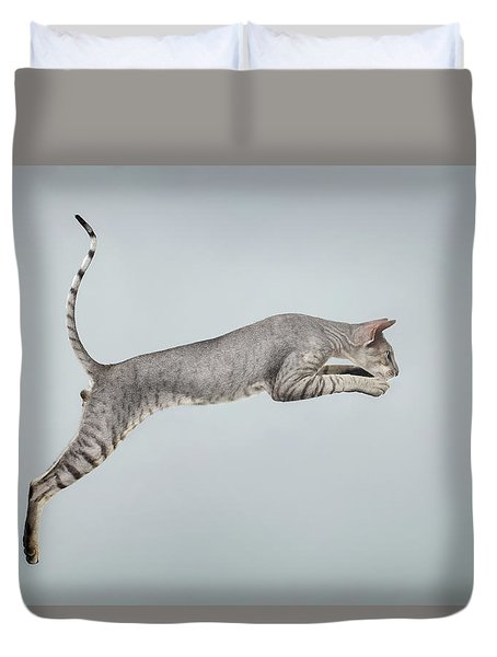 Jumping Peterbald Sphynx Cat On White Duvet Cover