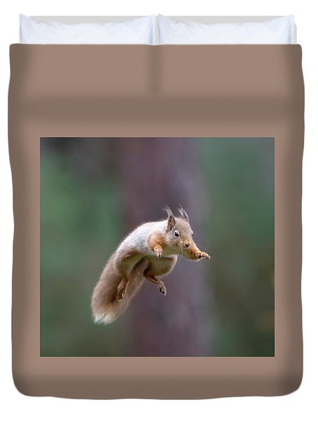 Jumping Red Squirrel Duvet Cover