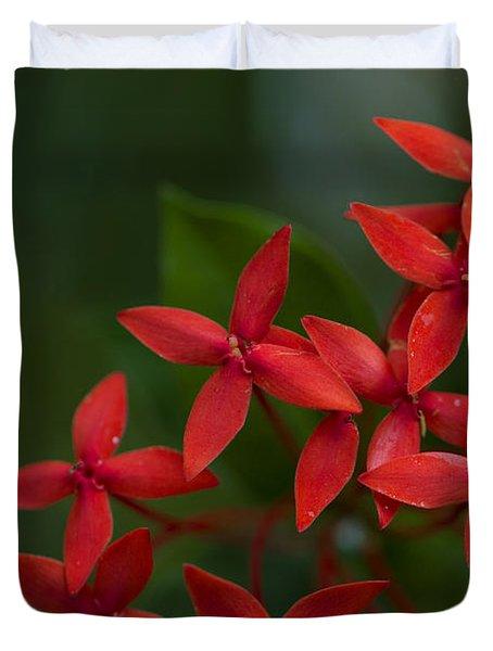 Jungle Geranium Duvet Cover