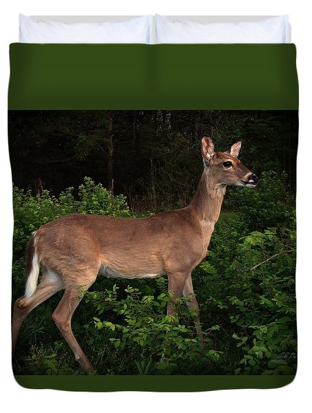 Just A Deer Duvet Cover by Bill Stephens