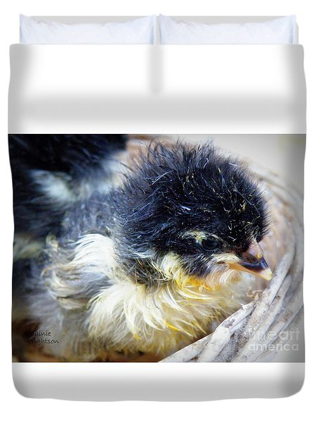 Just Hatched Duvet Cover by Lainie Wrightson