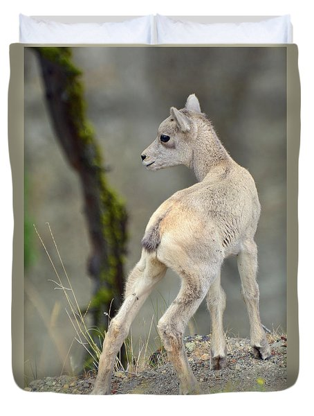 Duvet Cover featuring the photograph Just Kidding Around by Bruce Gourley