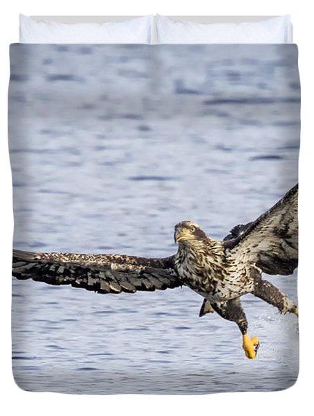Juvenile Bald Eagle Fishing Duvet Cover