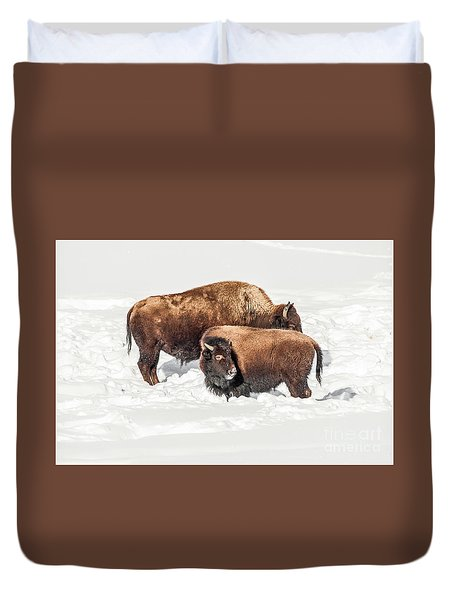 Juvenile Bison With Adult Bison Duvet Cover