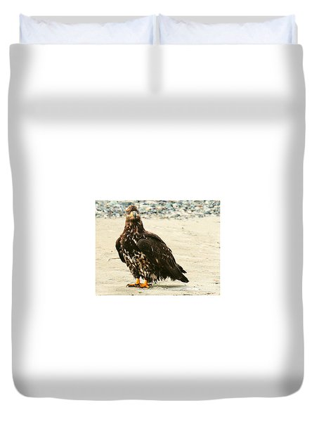 Duvet Cover featuring the photograph Juvenile Eagle On The Ice by Myrna Bradshaw