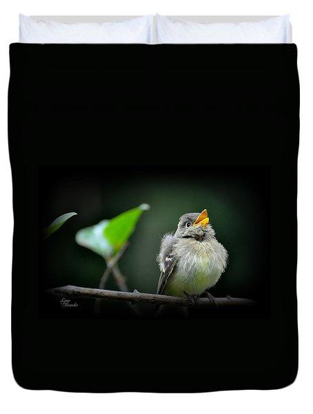 Juvenile Flycatcher Duvet Cover