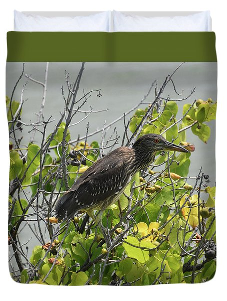 Duvet Cover featuring the photograph Juvenile Heron In Tree by Pamela Walton
