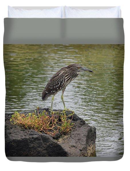 Duvet Cover featuring the photograph Juvenile Heron by Pamela Walton