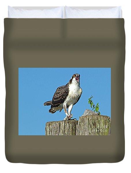 Juvenile Osprey#1 Duvet Cover by Geraldine DeBoer