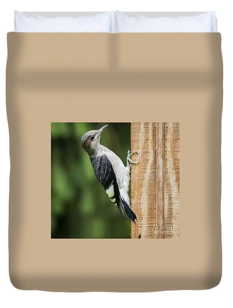 Duvet Cover featuring the photograph Juvenile Red Headed Woodpecker by Ricky L Jones