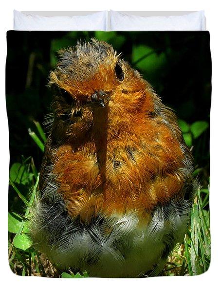 Juvenile Robin 2 Duvet Cover