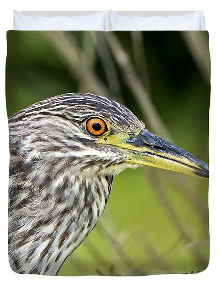 Juvi Black-crowned Night Heron Duvet Cover