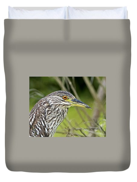 Juvi Black-crowned Night Heron Duvet Cover