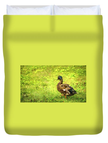 Duvet Cover featuring the photograph Juvinile Mallard by Onyonet  Photo Studios