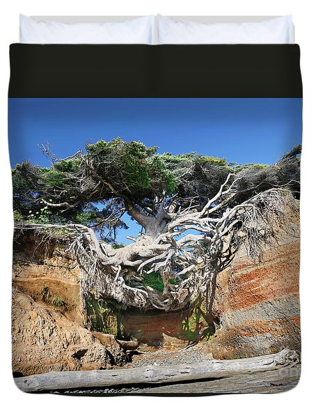 Kalaloch Tree Of Life Duvet Cover