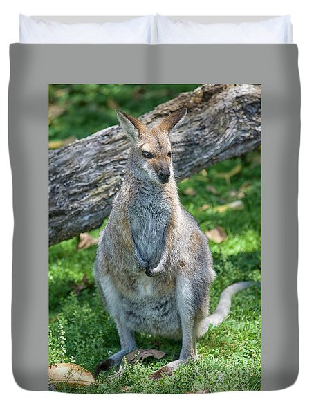 Duvet Cover featuring the photograph Kangaroo by Patricia Hofmeester