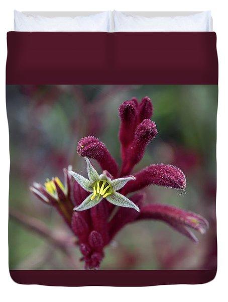 Kangaroo Paw Duvet Cover