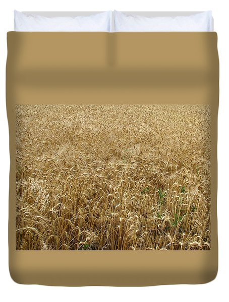 Kansas Wheat Duvet Cover