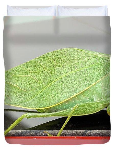 Katydids- Bush Crickets Duvet Cover