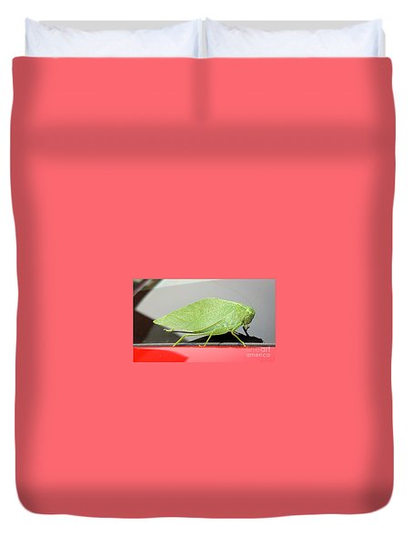 Katydids- Bush Crickets Duvet Cover