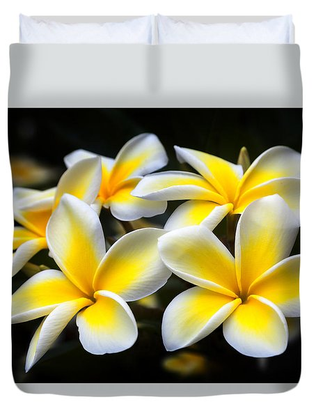 Kauai Plumerias Large Canvas Art, Canvas Print, Large Art, Large Wall Decor, Home Decor, Photograph Duvet Cover