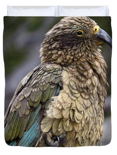 Kea Bird Duvet Cover by Sally Weigand