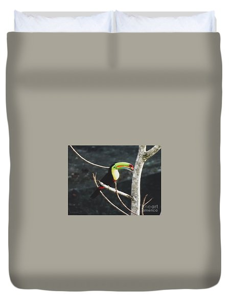 Keel-billed Toucan Duvet Cover