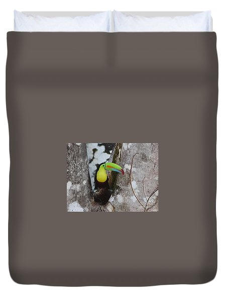 Keel-billed Toucan #2 Duvet Cover