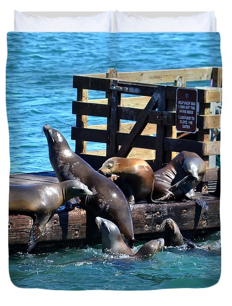 Keep Off The Dock - Sea Lions Can't Read Duvet Cover