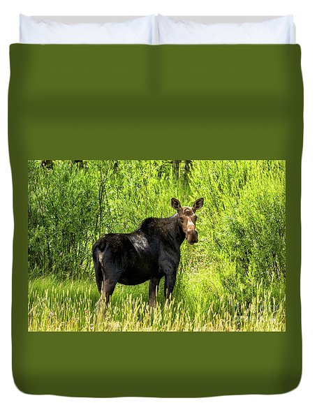 Keep Your Distance Wildlife Art By Kaylyn Franks Duvet Cover