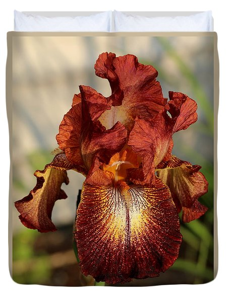 Duvet Cover featuring the photograph Kent Pride Iris by Kenny Glotfelty