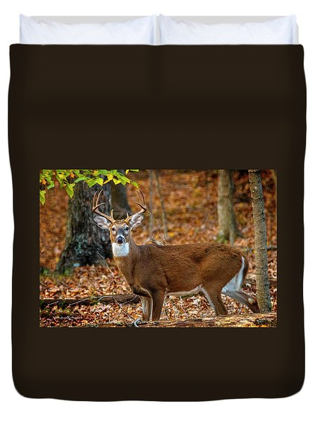 Kentucky Eight #2 Duvet Cover