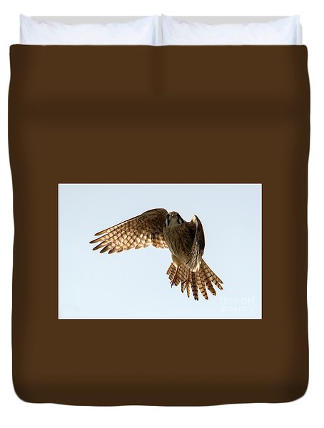 Duvet Cover featuring the photograph Kestrel Hover by Mike Dawson