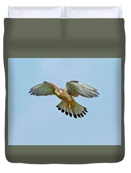Kestrel In The Wind . Duvet Cover