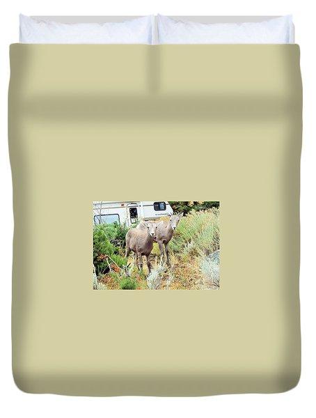 Kid Goats Duvet Cover
