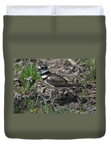 Killdeer Guarding Her Eggs Duvet Cover