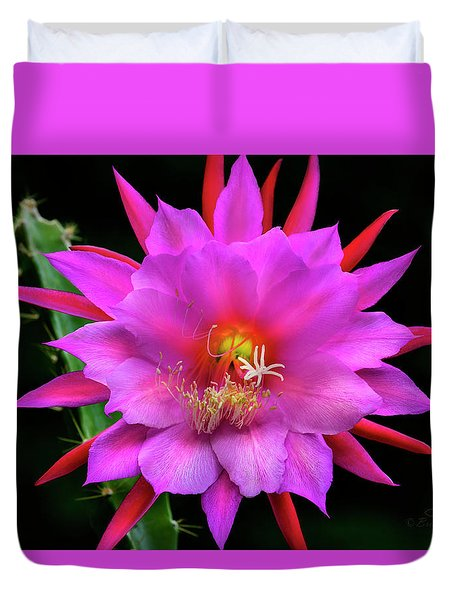 Kimnach's Pink Orchid Cactus Duvet Cover