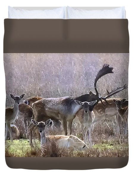 Kindred Spirits Duvet Cover by Tlynn Brentnall