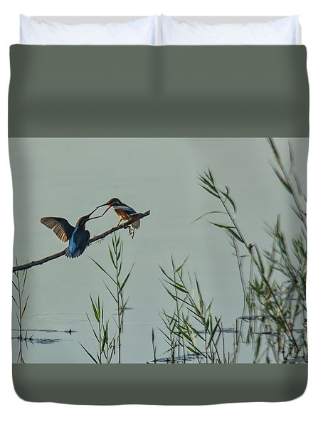 King Fishers  Duvet Cover