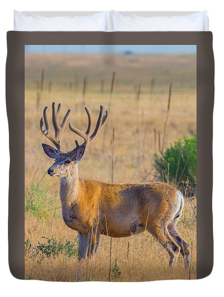 King Of The Plains Duvet Cover