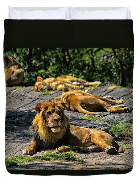 King Of The Pride Duvet Cover by Karol Livote