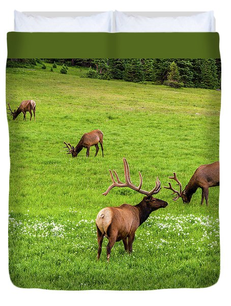 Duvet Cover featuring the photograph King Of The Rockies by TL Mair