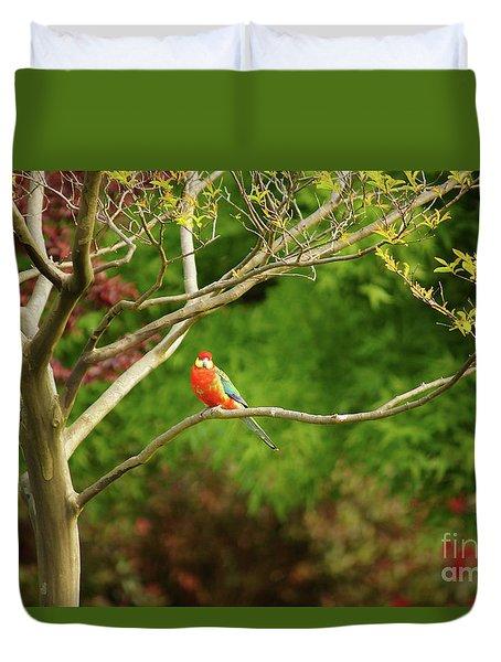 King Parrot Duvet Cover by Cassandra Buckley