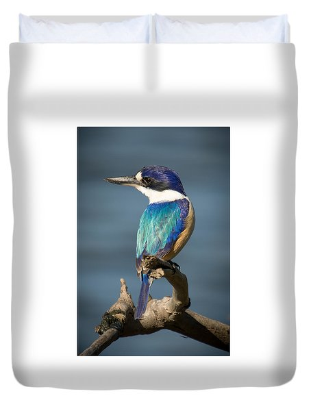 Kingfisher 3 Duvet Cover