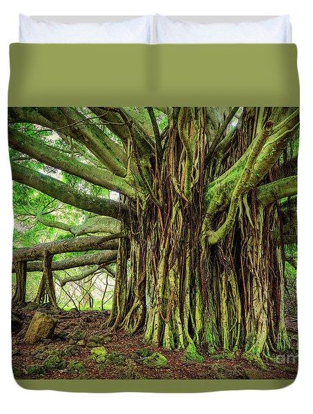 Kipahulu Banyan Tree Duvet Cover by Inge Johnsson