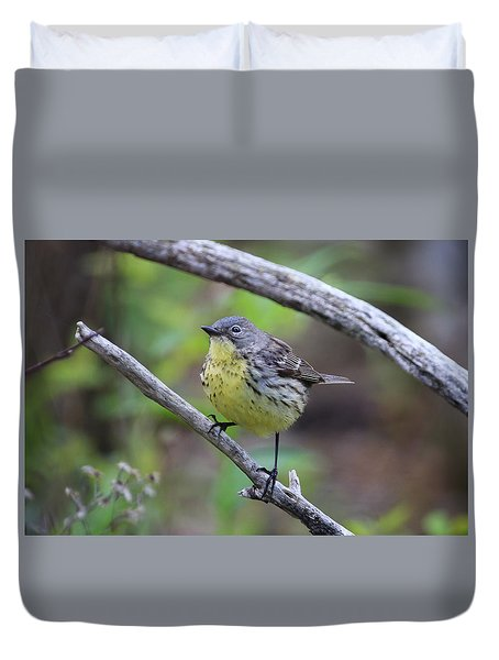 Duvet Cover featuring the photograph Kirtland's Warbler by Gary Hall