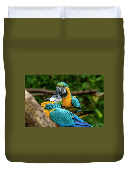 Kissing Parots Duvet Cover