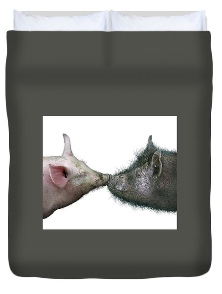 Kissing Pigs Duvet Cover