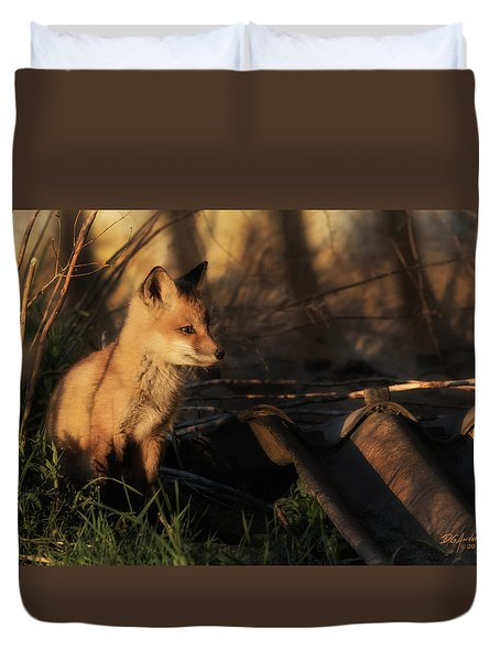 Kit Fox Sunset Duvet Cover